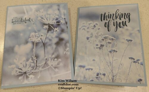 Feels Like Frost, Beautiful You, Rooted in Nature, Stampin' Up!, kwstamps.stampinup.net